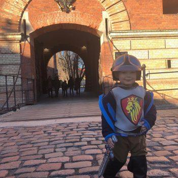 Kleiner Ritter vor der Zitadelle